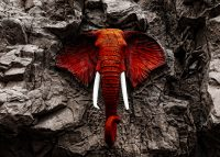 Red Elephant in Rocks